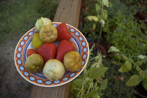 tomatillos & red peppers